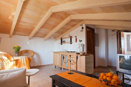 Apartment in the nature - Can Picafort - Daire