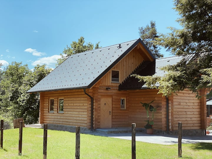 New log house near Bled on a tranquil location