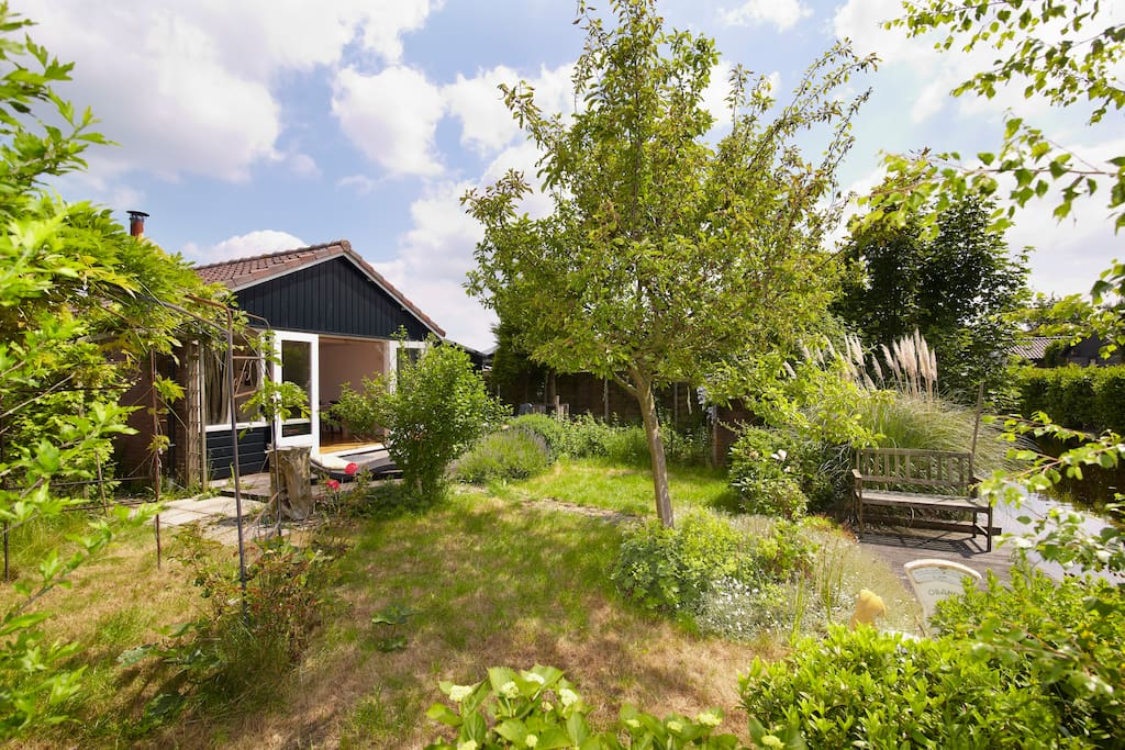 Summer cottage near amsterdam case in affitto a de for Case amsterdam affitto