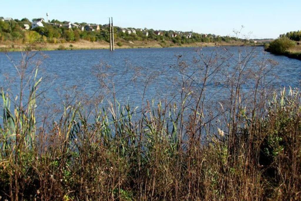 Lake in Petrykiv