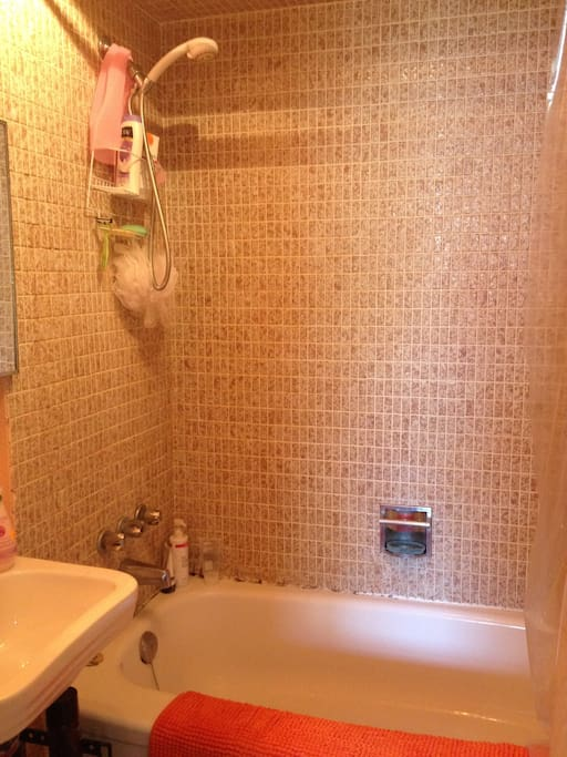 Full bathroom with handheld shower attachment and new Moen tap
