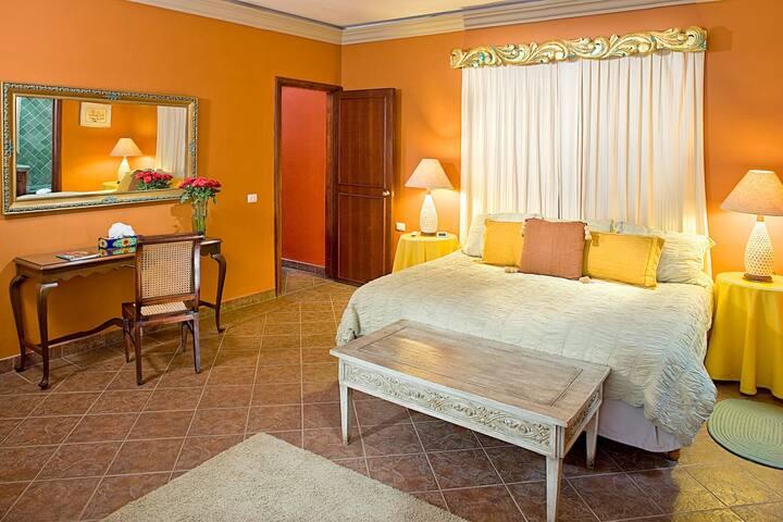 """CASA SCHUCK b&b: """" La LUNA Room """" - San Miguel de Allende - Bed & Breakfast"""