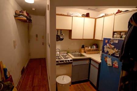 Cozy 1 bedroom in Union Square - New York - Apartment