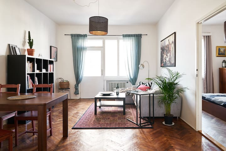 Vintage Apartment in Old Town