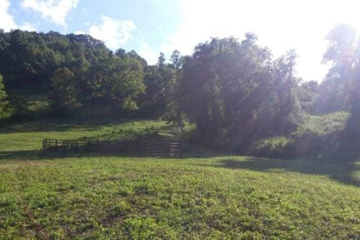 Tuckaseegee River pasture #5
