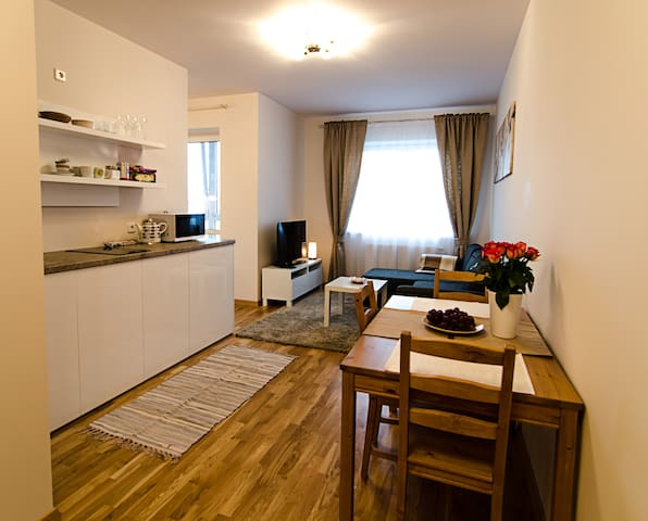 Lovely Dream Apartment - Vilnius - Apartamento