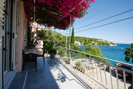 One-bedroom apartment with sea view - Molunat