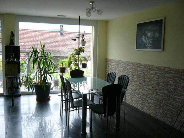 Modernes Wohnen auf dem Land - Oeschgen - House