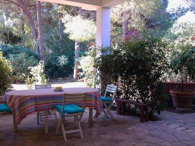 Veranda e giardino, mare e pineta - Castiglione della Pescaia - Apartment