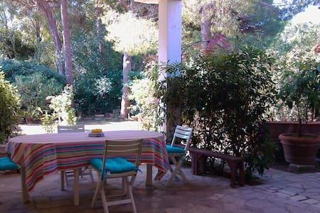 Veranda e giardino, mare e pineta - Castiglione della Pescaia