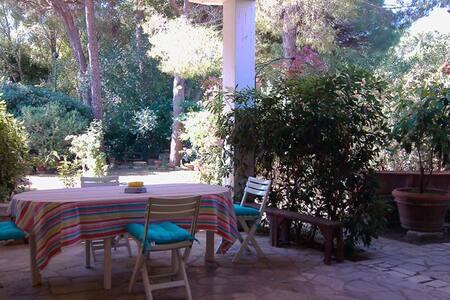Veranda e giardino, mare e pineta - 佩斯卡亚堡 - 公寓
