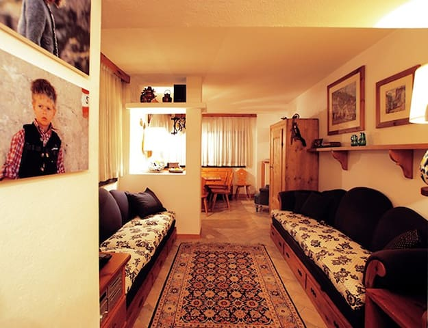 Ground floor apartment Selva Garden - Selva di Val Gardena - アパート