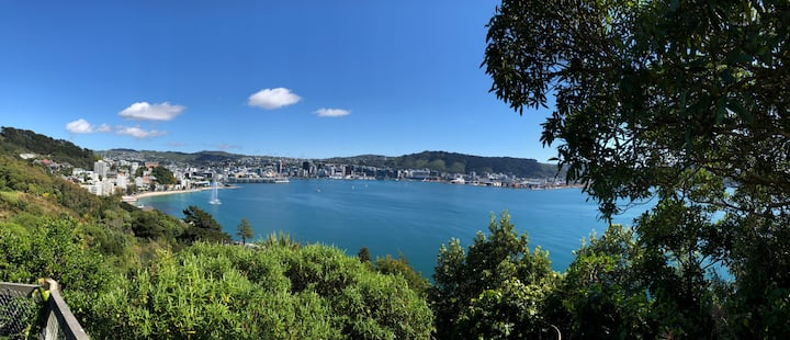 Luxurious, Private Studio above Oriental Bay