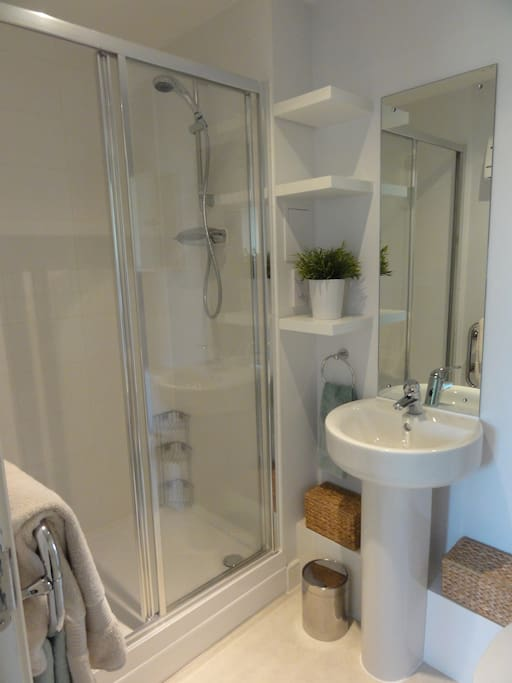 Modern on suite full bathroom.