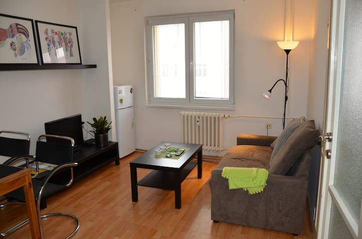 Lovely flat in Center of the City - Ostrava - Wohnung