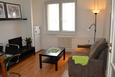Lovely flat in Center of the City - Ostrava - Lejlighed
