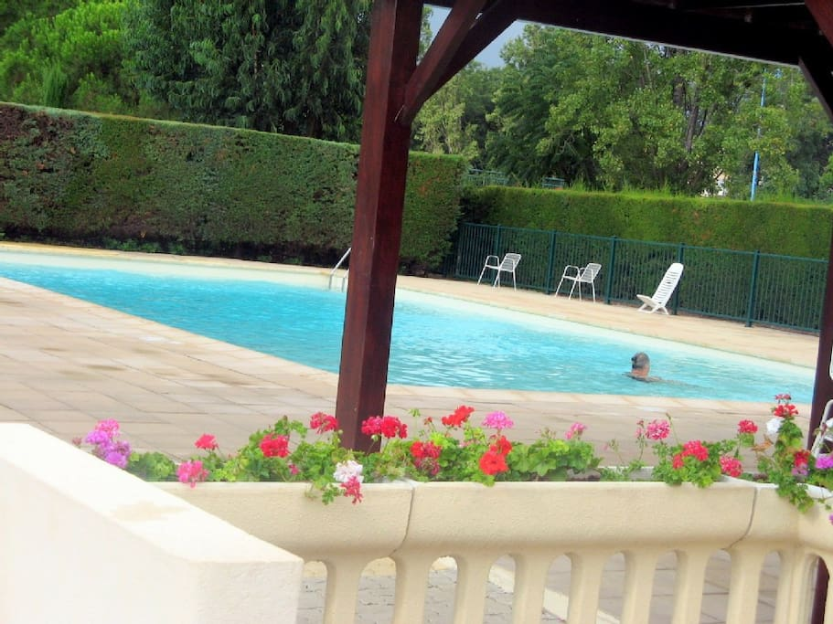 Appartement t2 avec piscine condomini in affitto a for Piscine mandelieu