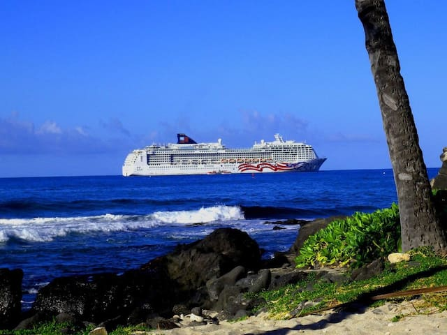 The Cruise ship makes port in Kailua bay ever Wednesday.