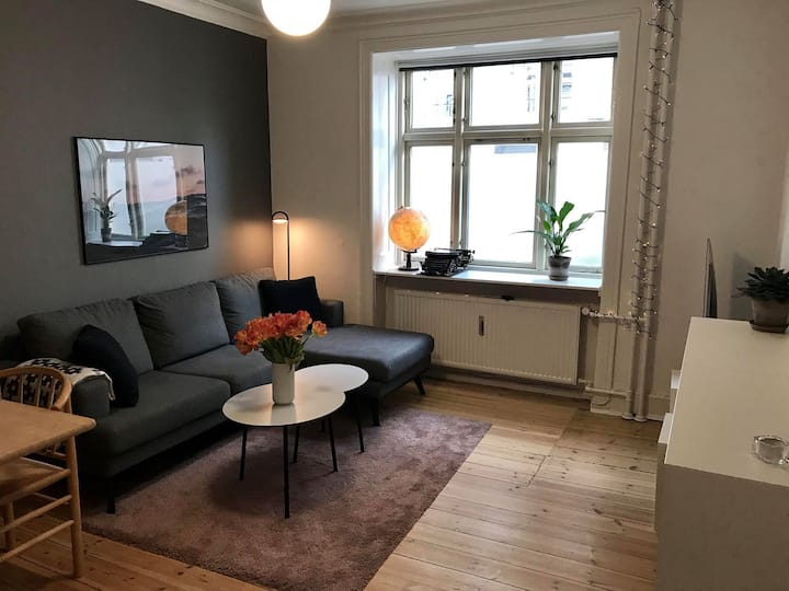 Lovely apartment close to everything