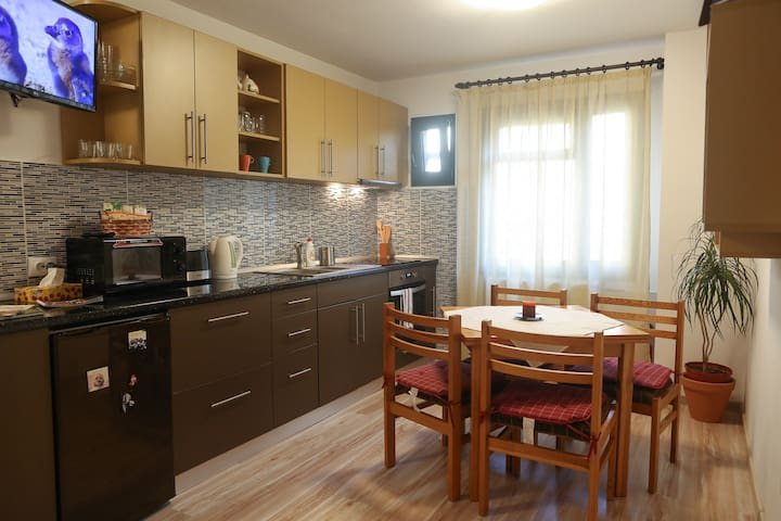 Central Place Apartment Timisoara