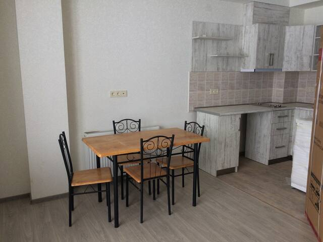 Cozy apartament in Bakuriani - Bakuriani - Appartamento