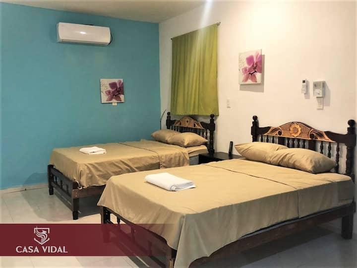 CASA VIDAL® DOWNTOWN Apartment 4: WiFi+A/C+TV+2`🛏