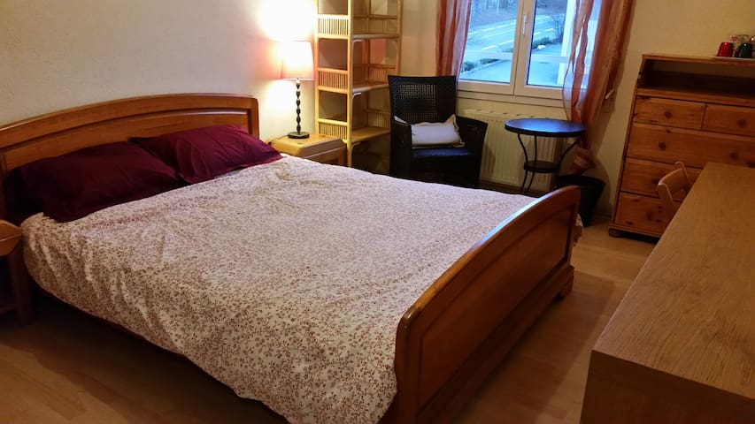 Room & private shower nr Geneva - Ferney-Voltaire - Maison