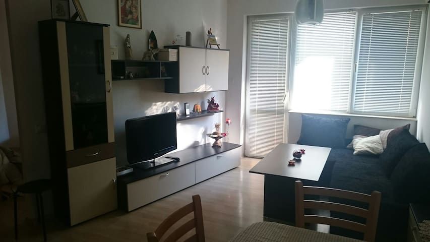 Cute,modern&cozy,center,park,wifi - Blagoevgrad  - Daire