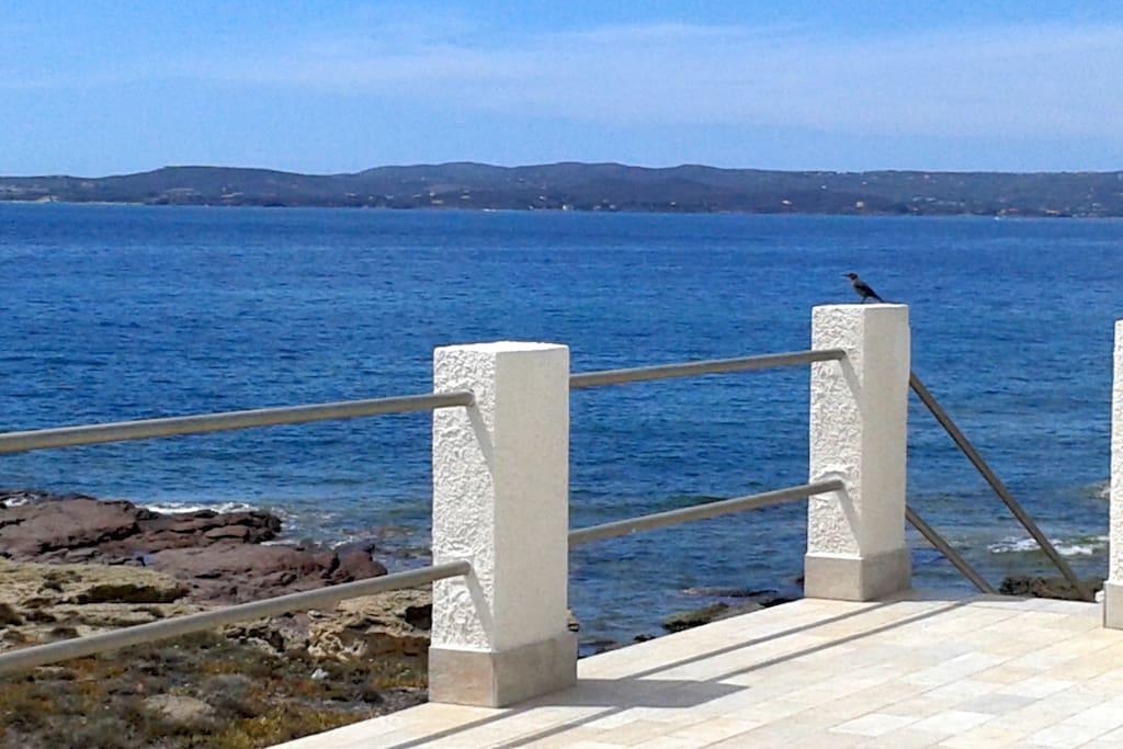 Terrazza e vista sul mare