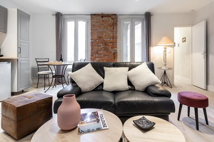 SPLENDID BRIGHT AND PLEASANT APARTMENT - TOULOUSE