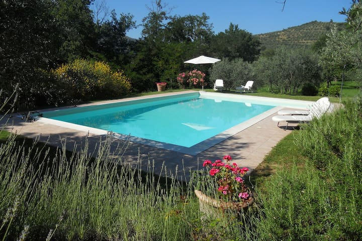Home  with shared pool, surrounded by nature in Castiglion Fiorentino