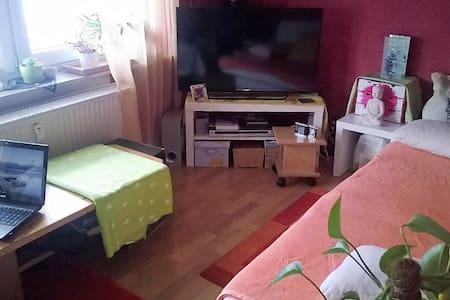 ruhige Wohnung im EG Nähe HD - Mauer