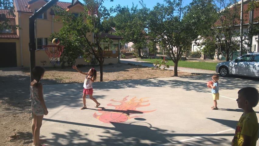 Children's Basketball Playground