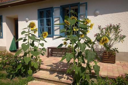 Casa Maya. Paradies für Paare.