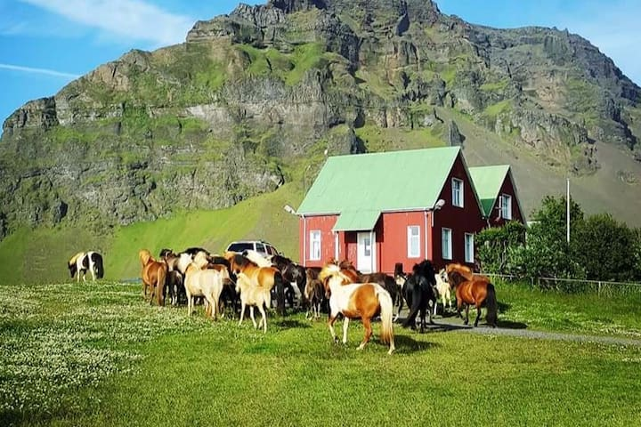 Holt Guesthouse - family farm! - Hvolsvöllur - Casa