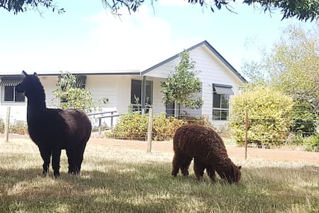 Auburnvale Cottage Farm Stay
