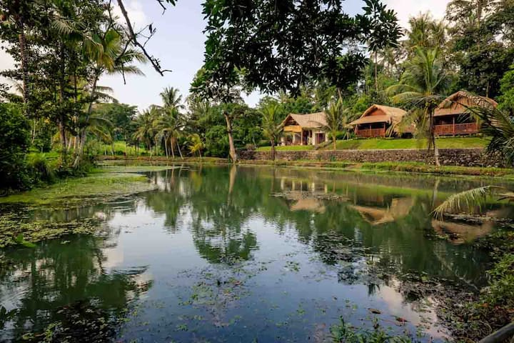 Authentic Balinese holidays in the rice fields 1 - Mengwi - Bed & Breakfast