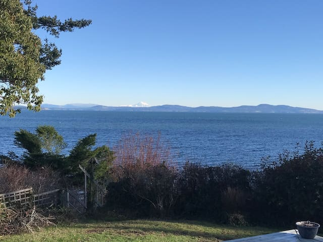 Cordova Bay Water Front Home
