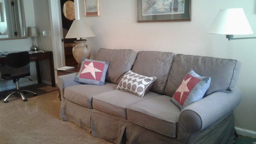 Queen size pull out sofa and work station with USB port and extra electric sockets to plug printer and/or laptop.
