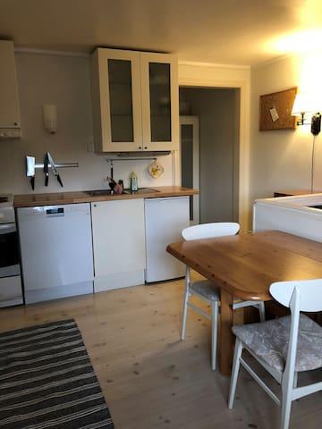 Sentral leilighet med egen inngang.