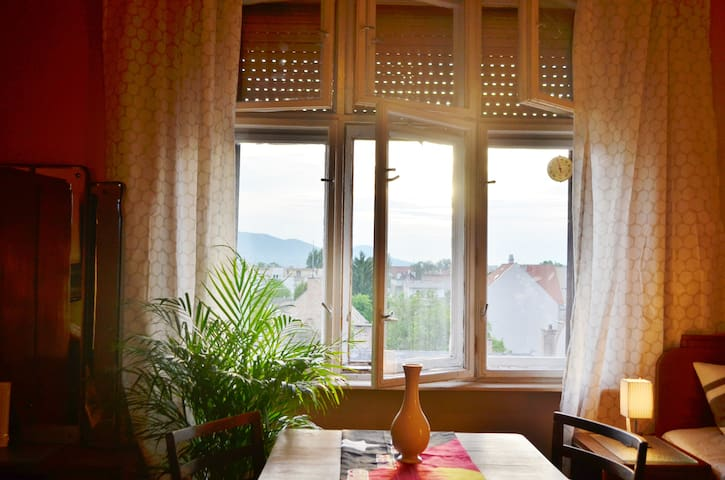 Historic Studio Apartment in the XIII District - Budapest - Leilighet