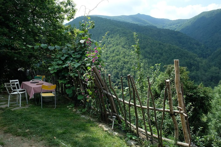 Grangette  rustique et chaleureuse en  montagne