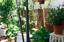 Marseille Studio Jardin 2