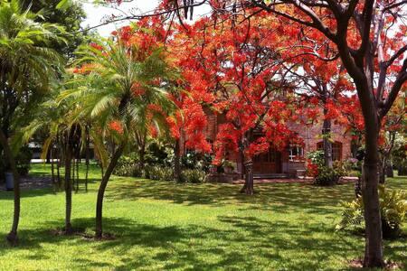 Villa Los Flamboyanes. Cuernavaca/Morelos - Tezoyuca