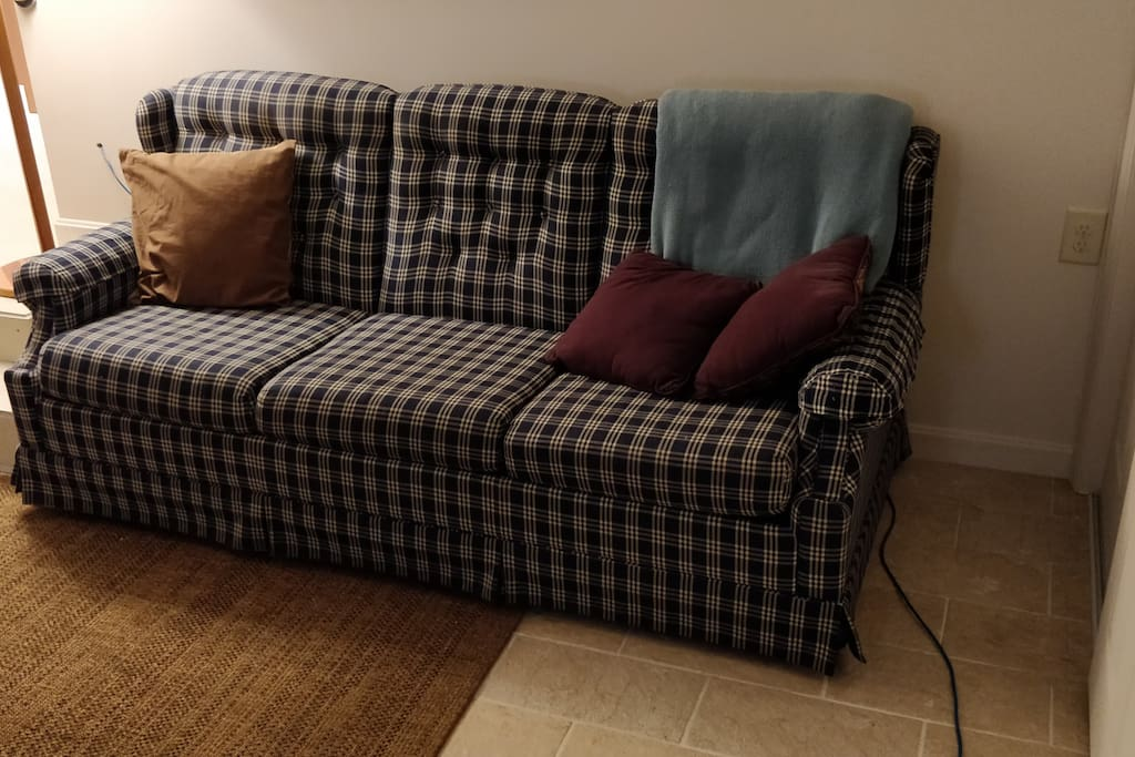 comfy sofa that folds out into queen size bed for additional guests