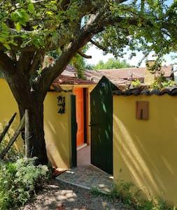Çiftlik evinde ayrı bina girişli iki özel oda