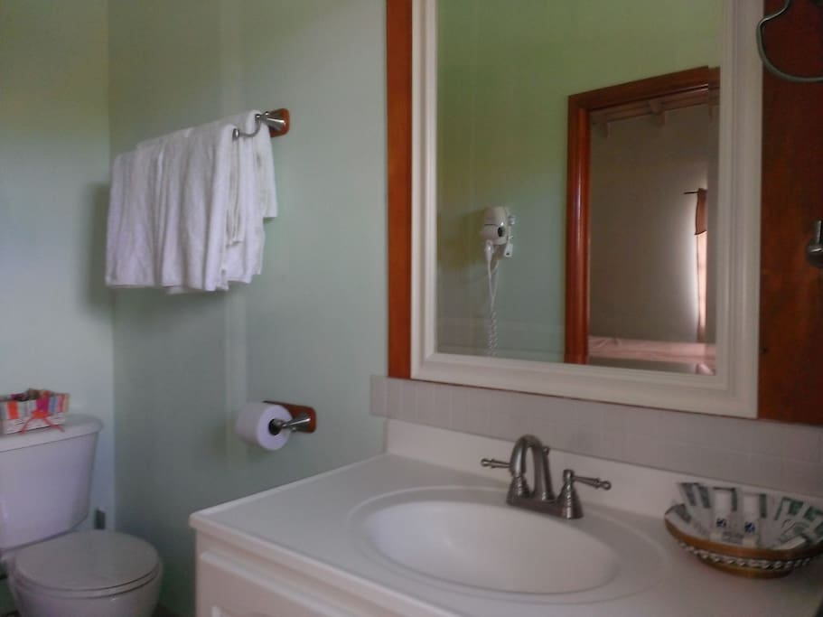 Bathroom vanity, mirror toilet etc