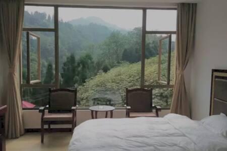 Tree山居-峨眉山/金顶/万年寺
