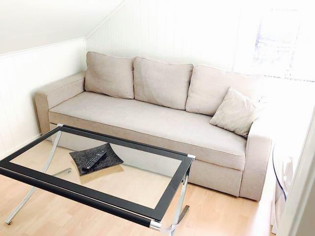 Alstahaug Apartament with privat roms
