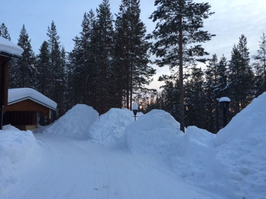We have a lot of snow! (February)